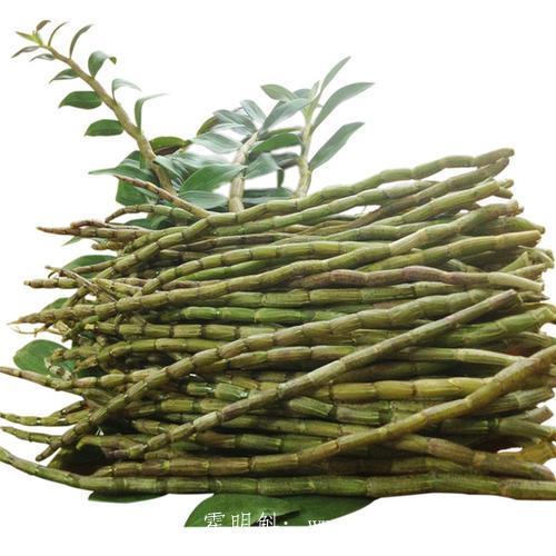 霍山新鲜的铁皮石斛价格多少钱一斤,石斛鲜条一天吃几根,铁皮石斛鲜条能保存几天