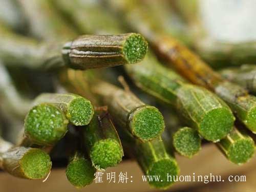 新鲜霍山石斛的价格多少钱一斤与霍山铁皮石斛鲜条吃法