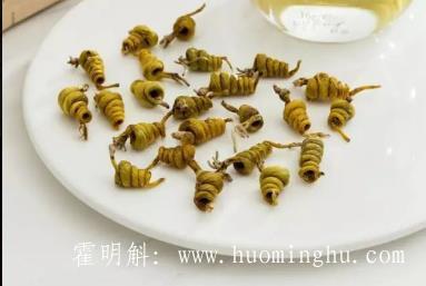 霍山石斛(米斛)最有效的吃法和功效